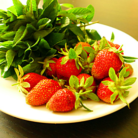 first harvest of strawberries and mint