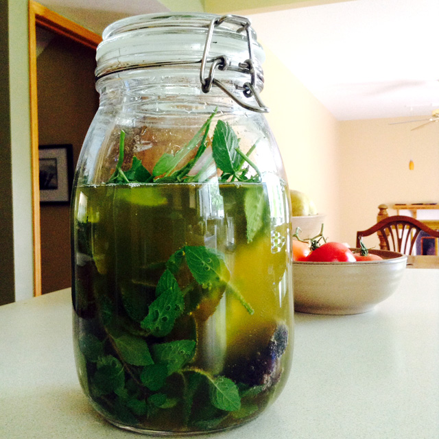 1.5 quarts of water kefir culturing with fresh mint leaves and figs on my kitchen counter